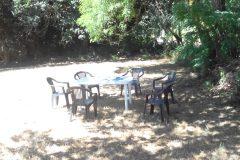 Onder de boom eten en drinken